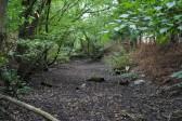 Bruces Castle Moat Cooks Lane Conington, dates back to c 1242.