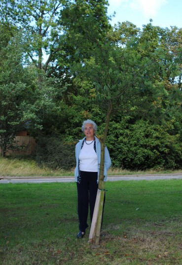 Mary Attrill (nee Savage) last of the Savage's of Glatton. Beside the oak tree planted by Ivy Savage.