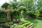 Glatton in Bloom Open Gardens Glatton Village. (Appletree Cottage)