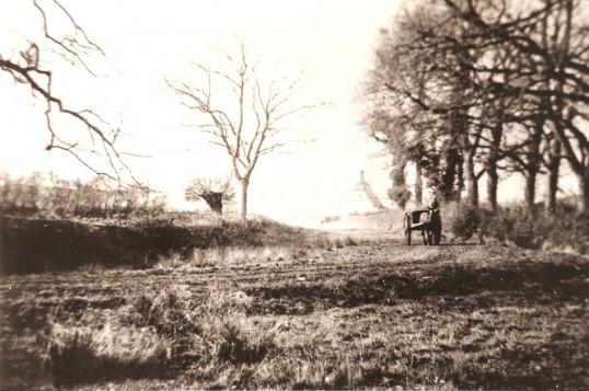 Berestead Cottage,(Coles Hole) Glatton Village.