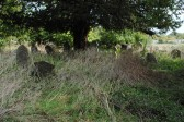 All Saints Churchyard, Sawtry. (Start of clean up by friends of All Saints Church.Work still to do)