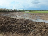 The Wetland, part of the drainage system for the Gidding Road Developement, Sawtry.
