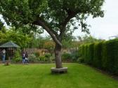 Glatton Open Gardens, Glatton Village.