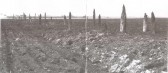 Remains of a Bronze Age causeway found at Barway Fen, near Soham.