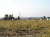 Loves Farm estate