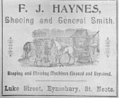Haynes advert, Eynesbury, 1901