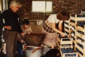 Wine making in Eaton Socon, about 1980