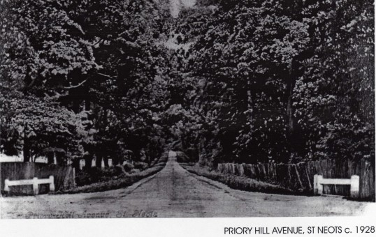 Priory Hill, looking east from Priory Park crossroads, about 1928