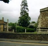 Redwood Tree opposite St Marys Church, Eyesbury, in 2008
