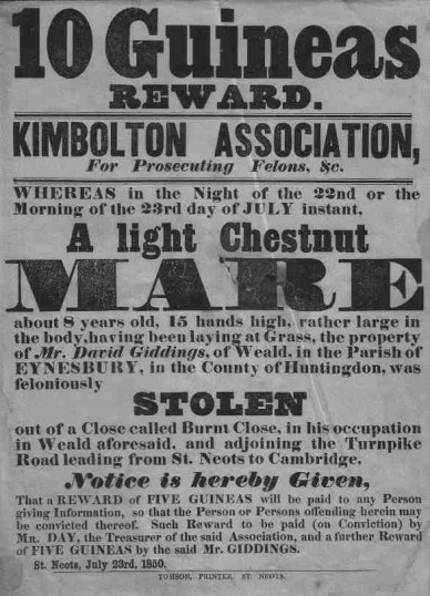 Notice of a reward for a stolen horse from Eynesbury Parish in 1850