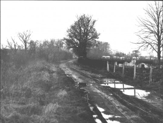 Howitts Lane, Eynesbury in 1950, caravan park in the distance, SNEMU 1995.1.4.38