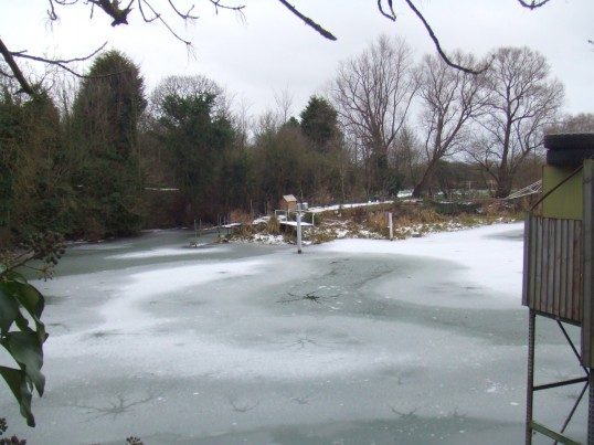 Eaton Socon River mill pond frozen over in January 2010