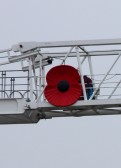 Close up of Giant Poppy on a crane at the Laing O'Rourke site near the A428 at St Neots in November 2010