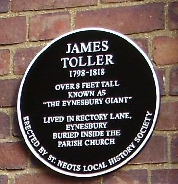 Historical plaque to James Toller, the Eynesbury Giant (P.Ibbett)