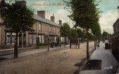 Avenue Road, St Neots when the trees were still there in 1909 !