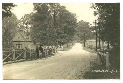 A view of Diddington Lane, a few miles north of St Neots, around 1900