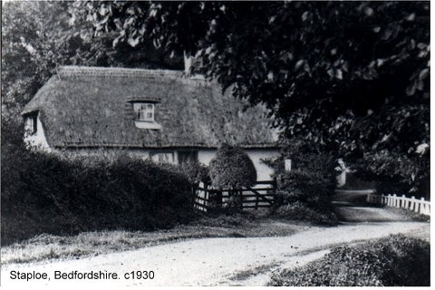 Mrs Elliott's cottage next to Falls Farm in Staploe, about 1930 (N. Cutts)