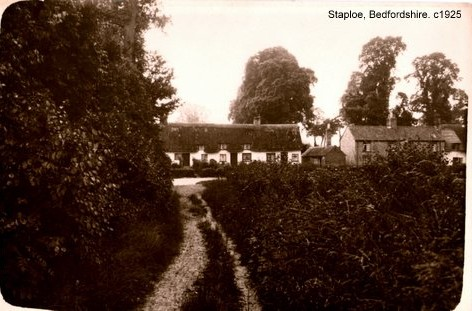 View of Staploe village from the lane, about 1925  (N. Cutts)
