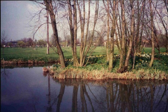 Riverside Park, river island known as 'daffodil' or 'swan' island, in Eaton Ford in March 1988