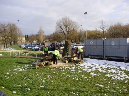 Final cutting up of tree at Riverside Park as part of Flood Defence scheme in February 2009. P Ibbett