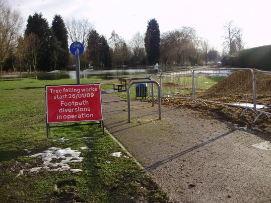 Trees cut down by The Paddock as part of new flood defence scheme in February 2009. Note the melting snow and flood water in the background. (P Ibbett)