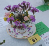 Keysoe Village Show 2013 - decoration in a tea cup competition