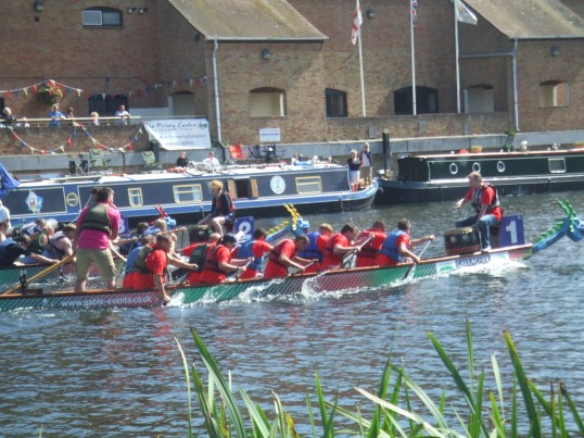 Dragonboat racing on the river Great Ouse at the summer festival - August  31st 2013