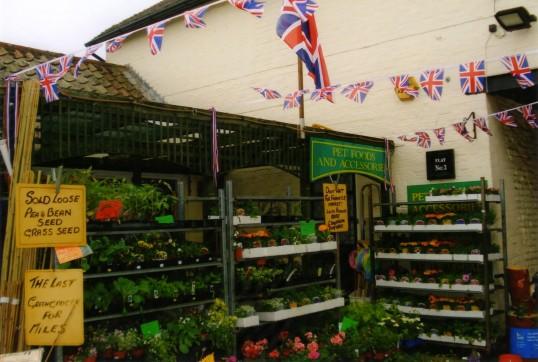 Queens Jubilee Decorations June 2012 – Hamiltons Greengrocers in Cross Keys Mews (Ann Richards)