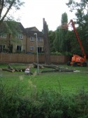 Tree cutting on the bank by Navigation Wharf - September 9th 2013