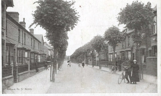 Avenue Road in St Neots during the Great War