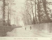 The Avenue, now known as Church Lane, Stetchworth. Possibly the Postman chatting to a young lad.
