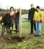 Planting of the Millennium Oak. Junction on the Newmarket Haverhill Road.