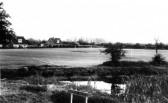 Swavesey village green.. Description
