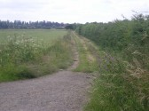 A view of the bridleway footpath looking from Wilburton station towards Wilburton village