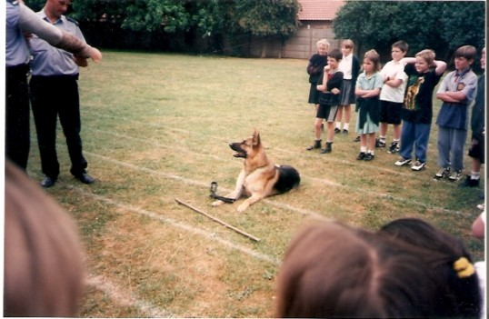 Wilburton school children watching police training with their police dog,s