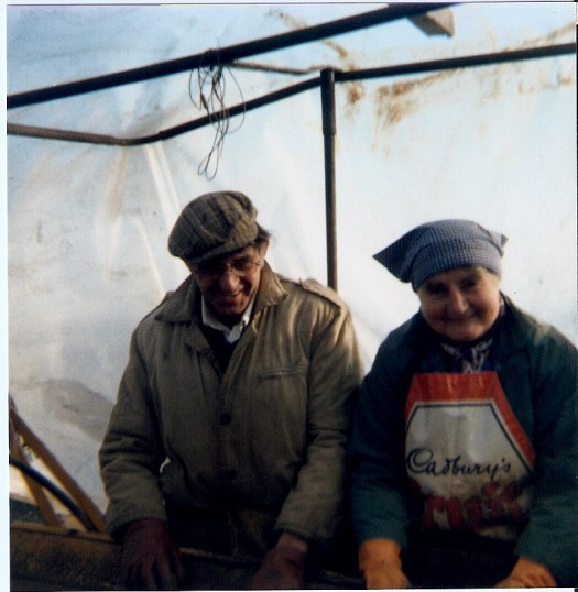 Harold Sharp  and Mrs Frank Yarrow at work on a potato harvester