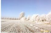 A beautiful bright & frosty morning