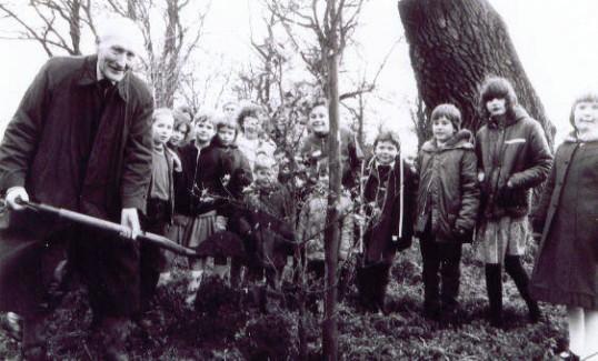 Mr Pell planting a new oak tree, Station Road, Wilburton.