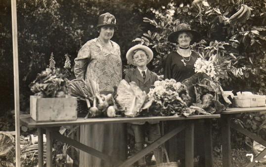 Wilburton garden fete, produce stall.