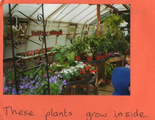 Visit to Wilburton Garden Centre