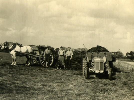 P.O.W.s muck carting at Wilburton.