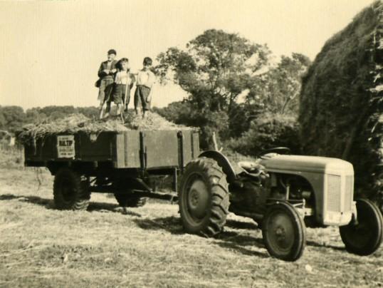 Children on trailer