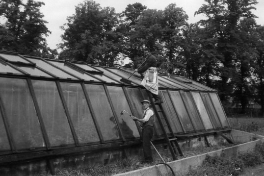 Cleaning the glasshouses