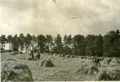 Target field Wilburton