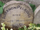 Grave stone of Algernon Peckover interned in the gardens of The Friends House Wisbech.Photo Owen Smithers taken in 2007.