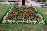 Wisbech in Bloom 2010.St Peters Flower bed. Copyright Owen Smithers