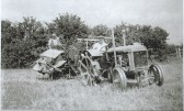 Farming in Witcham
