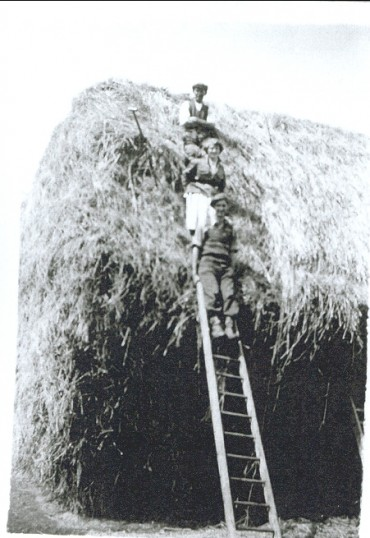 Hay Stack At Yew Tree Farm, Witcham, Cambridgeshire